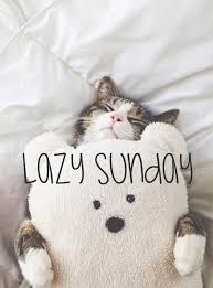 lazycatsunday